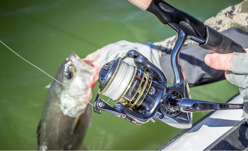 best spinning reel under 100 dollars